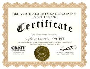Image Result For Dog Training Instructor