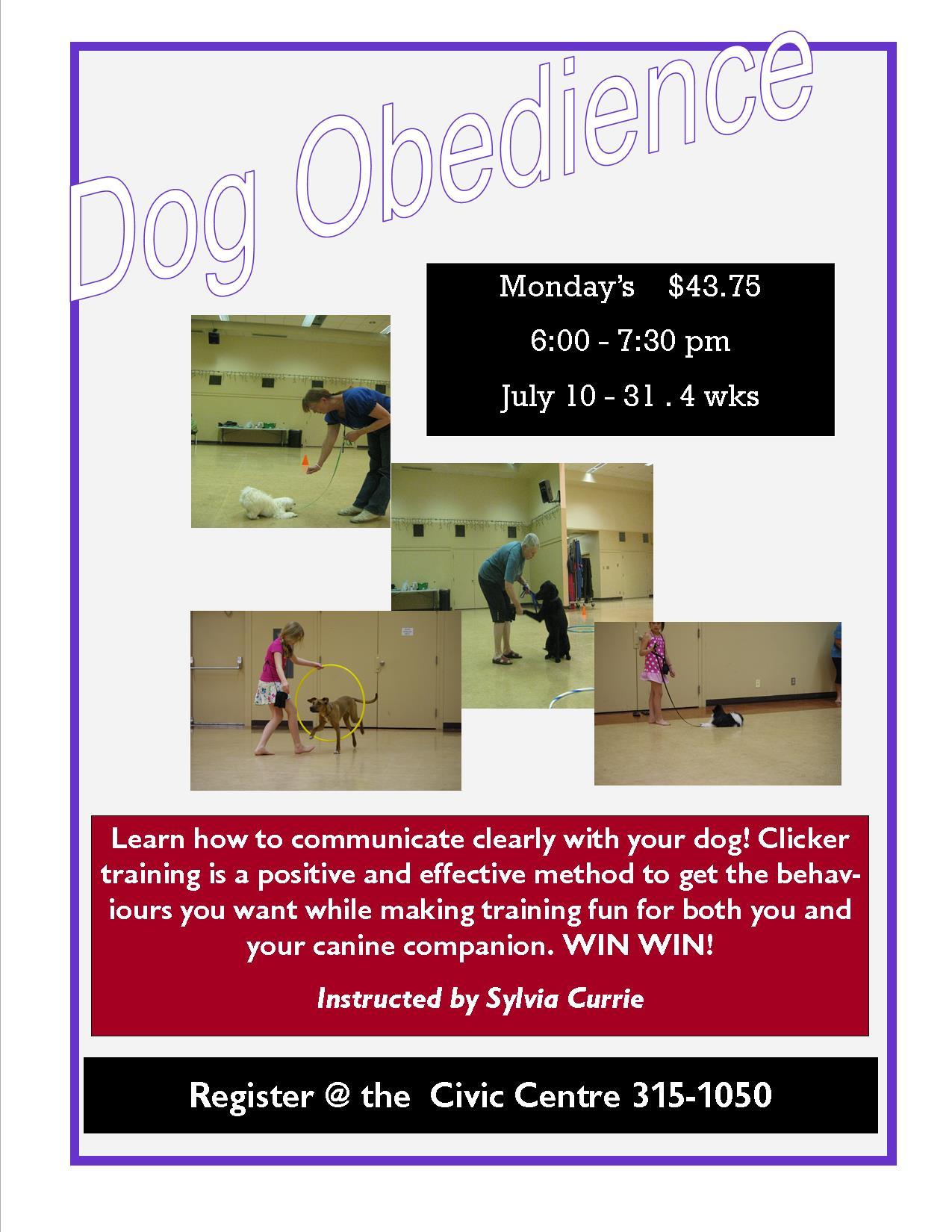 Dog Training Lasses Glenview